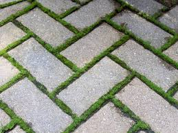 how to remove moss from pavers s s pavers