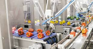 Robot-assisted packaging improves efficiency - EE Publishers