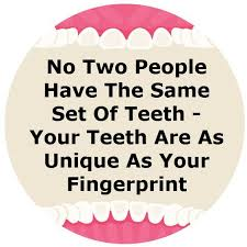 Image result for images of dental facts