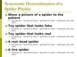 Image result for what is systematic desensitization