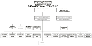 Chart Organization Of Local Government Organizational Chart Municipality Of Lupon