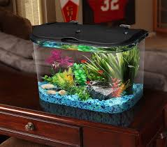 5 gallon aquarium kit led fish tank light glass lighting filter marineland water go pet supplies