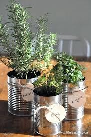 diy herb garden ideas alluring window sill herbs designs with best window herb gardens ideas only