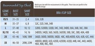 3pcs Set Sexy Genie Bra With Pads Seamless Push Up Bra Plus Size Underwear Wireless Bra Black White Nude Wireless Bra Bra Up Plus Bra Aliexpress