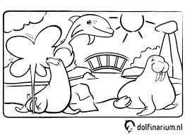 Pretpark Kinder Kleurplaten Dolfinarium