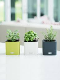 close-up of planted green, slate, and white mini cube self-watering