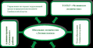Отчёт о работе школьного лесничества Лесная сказка Контент  Организации работы школьного лесничества Лесная сказка