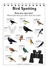 Birds Primary Teaching Resources And Printables Sparklebox