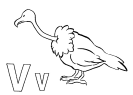 Small Picture Alphabet Coloring Pages Animal Vulture Alphabet Coloring pages