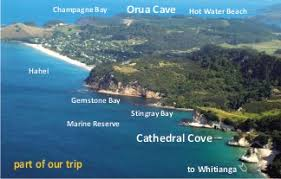 sea cave adventures whitianga cathedral cove and hot water beach Whitianga Map New Zealand Whitianga Map New Zealand #16 whitianga new zealand map
