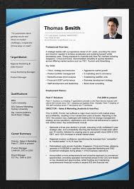 Gallery Of Professional Resume Template Resume Cv Professional