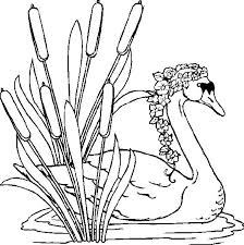swan coloring pages barbie swan lake coloring pages