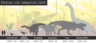 Dinosaur Sizes Comparison Chart Tiny T Rex Relative Is Dubbed The Harbinger Of Doom