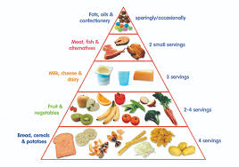 Food Group Pyramid Chart Toddler Food Pyramid First 1000 Days