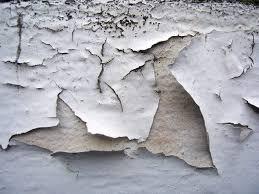 difference between exterior interior paint. interior and exterior latex. peeling paint 1 difference between i