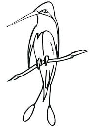 Astonishing Stocks Of Realistic Bird Coloring Pages Coloring Pages