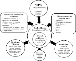 Mpn Chart For Coliforms Frontiers Multi Drug Resistant Coliform Water Sanitary
