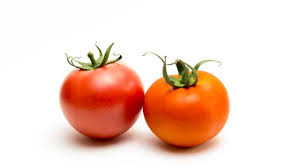 How Would A Tomato Look Under Blue Light Electricity Experiment Make A Tomato Battery