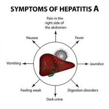 Indian Diet Plan For Hepatitis A B C D And E Dietburrp
