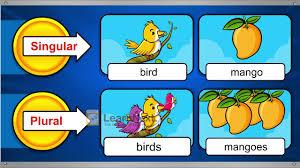 Singular And Plural Nouns Chart Class 3 English Grammar Nouns Special Names Singular Plural Nouns