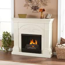 gel fireplace insert choice image home fixtures decoration ideas
