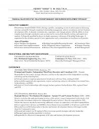 Business Development Executive Resume Fresh Business Development Executive Summary Best Solutions Of 16