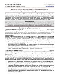 Business Development Executive Resume Best Ideas Of Senior Marketing Manager Resume Beautiful Business 10