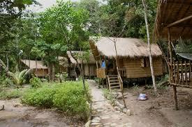 The Tree House  Thailand VillasTreehouse Koh Phangan