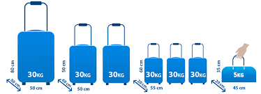 Transportation Of Luggage Ecolines