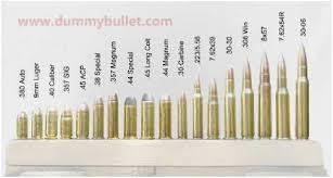 Extraordinary Ammunition Caliber Chart Smallest Bullet Size