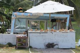 Conch shell stalls a familiar sight in Cayman\u0027s eastern districts ...