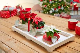 Interflora 3 Christmas Craft Projects With Poinsettia