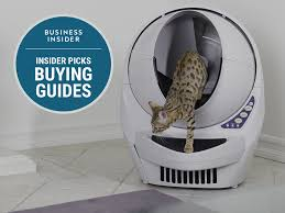 Litter Robot/Business Insider