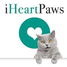 electronic dog doors. Top 5 Best Microchip Cat Flap \u0026 Electronic Dog Door Reviews - I Heart Paws Doors 1