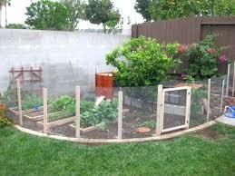 chicken wire fence ideas. Wire Garden Fence Small Fencing Ideas Best  Chicken On . N