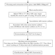 The Flow Chart For Making Jamun Wine Download Scientific