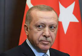 Turkey's Erdogan strong abroad and weak at home - Asia Times