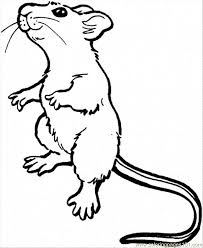 Small Picture rat coloring pages Coloring Pages Rat 7 Animals Mammals