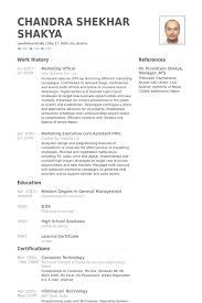 Marketing Officer Resume Samples Visualcv Resume Samples Database
