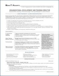 Custom Resume Templates Delectable Google Resume Templates New Fictional Character Resume Template
