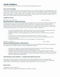 50 Best Of Business Plan Resume Sample | Resume References