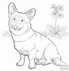 Awesome Weiner Dog Coloring Pages Good Dachshund Coloring Pages