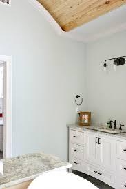 sea salt paint colorTips for Choosing Whole Home Paint Color Scheme