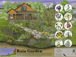 Small Picture Photos of Rain Gardens New Rain Garden Poster and Presentation