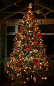 56 Best Light Up Christmas Images On Pinterest  Outdoor Lighting What Kind Of Christmas Trees Are There