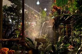the 2018 philadelphia flower show theme wonders of water inspired the main exhibit rainforest theme