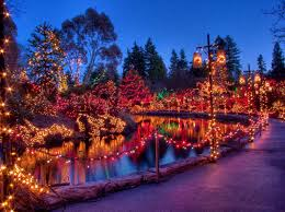 Garden Of Lights January 1 Its The Most Wonderful Time Of The Year At Vandusen