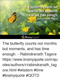 Butterfly Quotes Interesting The Butterfly Counts Not Months But Moments And Has Time Enough