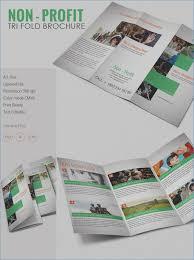 Brochure, vectors, Photos and PSD files Free