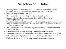 Endotracheal Intubation In Pets
